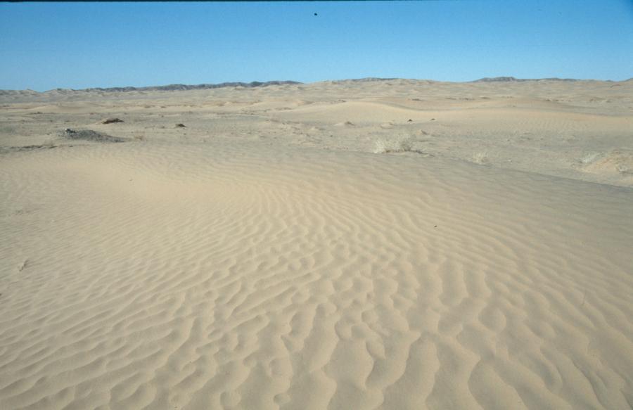 http://www.lomo-expedition.de/PK_Nishki_2004_02_28_Sand_-_Sand_-_Sand....jpg